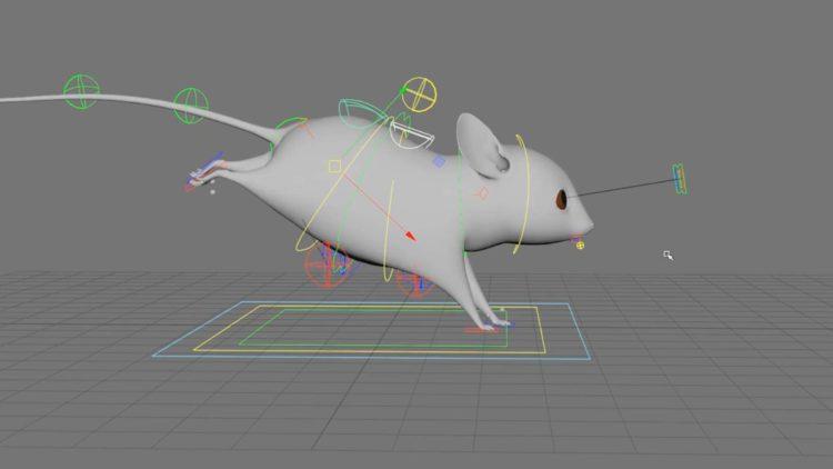 Devenir Rigger 3D