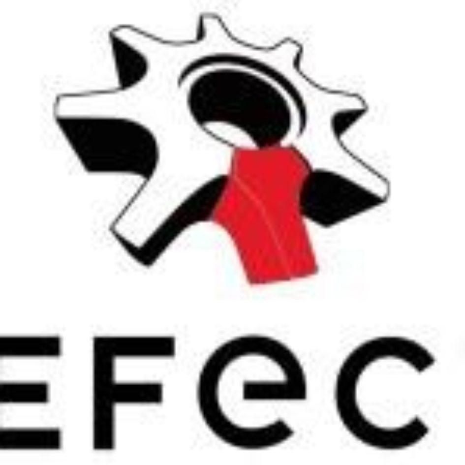 Logo In efecto